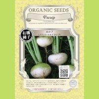 【有機種子】白カブ/フラット/小カブタイプ【大袋1dl】Turnip : Turnip White Fla