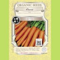 【有機種子】ニンジン ナンテス【大袋2dl】Carrot : Nantes 3888