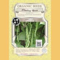 【有機種子】つるありインゲン / ジャンボ平さや / 緑 【大袋5dl】Climbing Bean : Flat Podded / Green
