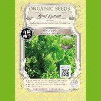 【有機種子】リーフレタス/ロロビオンダ/緑 【大袋20ml】Leaf Lettuce : Lolo Bionda