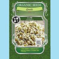 【有機種子】有機レンズ豆 /スプラウト【大袋400g】Lentils : Sprout