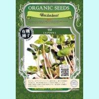 【有機種子】そば /スプラウト【大袋330g】Buckwheat Sprout