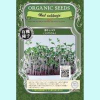 【有機種子】赤キャベツ  / スプラウト 【大袋360g】Red cabbage : Sprout
