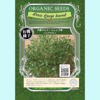【有機種子】大葉クレス / こしょう草  /スプラウト 【大袋350g】 Cress Large leaved : Sprout