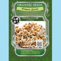 【有機種子】クリムゾンレッドレンズ豆/スプラウト【大袋400g】Crimson Lentils:Sprout