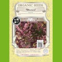 【有機種子】マスタード/からし菜/パープルフリル/紫【大袋50ml】Mustard  : Purple Frills