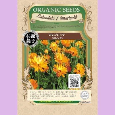 【有機種子】カレンジュラ〈オレンジ〉【大袋2dl】Calendula  Marigold
