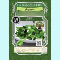 【有機種子】ひまわり / スプラウト  【大袋200g】Sunflower : Sprout
