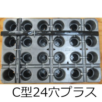 イチゴ育苗用トレイ カタツムリ C24穴プラス