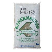 【西洋芝種子】トールフェスク【1kg】【寒地型】