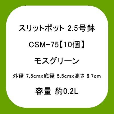 スリットポット 2.5号鉢 CSM-75
