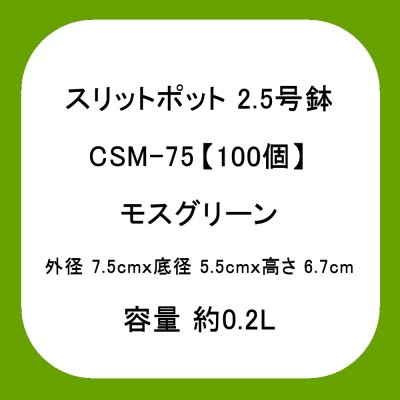 スリットポット 2.5号鉢 CSM-75【100個】