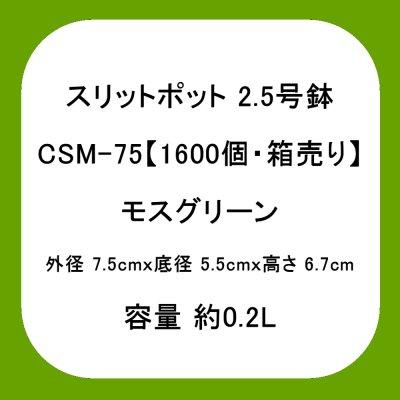 スリットポット 2.5号鉢 CSM-75【1600個・業務用】