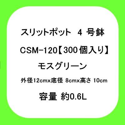 スリットポット 4号鉢 CSM-120