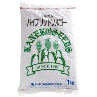 【飼料作物】ハイブリッドソルゴー【1kg】中早生種|カネコ種苗製