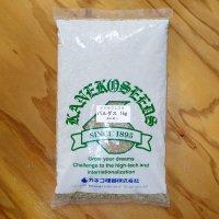 【牧草種子】メドウフェスク|パルダス 【1kg】放牧利用向き【中生種】カネコ種苗製