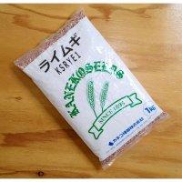 【牧草種子】ライ麦|ライムギ【1kg】カネコ種苗製