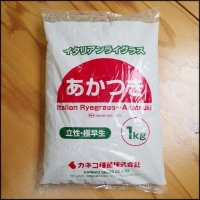 【牧草種子】イタリアンライグラス|あかつき【22.5kg】極早生種|短期利用型飼料作物用|PVP登録品種|カネコ種苗製