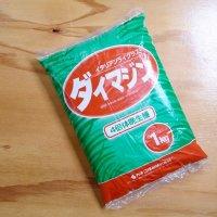 【牧草種子】イタリアンライグラス|ダイマジン|4倍体中晩生種【1kg】カネコ種苗製