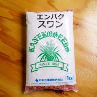[値下げ]【牧草種子】えん麦|スワン|極早生種【1kg】カネコ種苗製