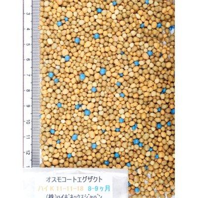 オスモコートエグザクト(N11-P11-K18)