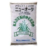 【緑肥種子】アウェナストリゴサ|ニューオーツ【1kg】線虫抑制|硬盤破砕|早生種|キスジノミハムシ忌避|カネコ種苗製