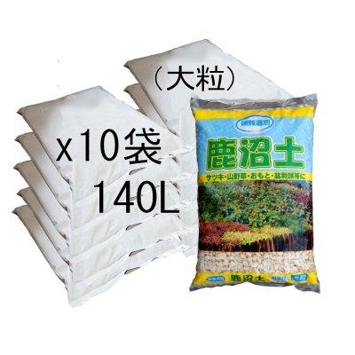 【硬質選別】鹿沼土(粒度:大粒)