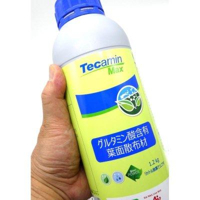 テカミンマックス(Tecamin Max)【1.2kg】窒素7%-アミノ酸14% グルタミン酸・核酸系肥料 味の素